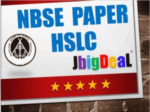 NBSE HSLC Alternative English Question Paper